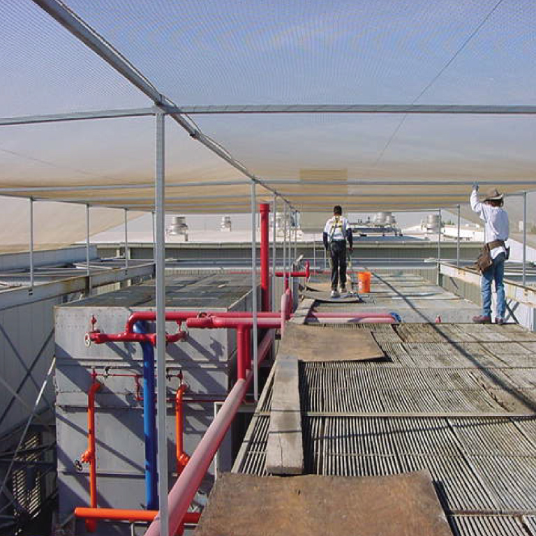 large commercial bird control work in Arizona