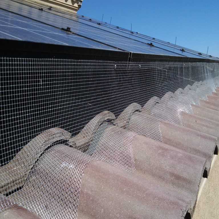 Solar panel screening to stop pigeons from nesting in AZ