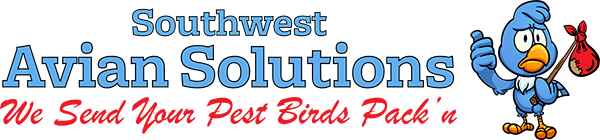 Southwest Avian Solutions Pigeon Control Arizona