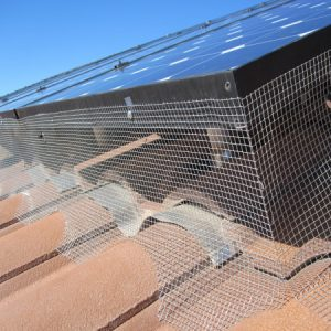 Solar panel pigeon control screen in Arizona