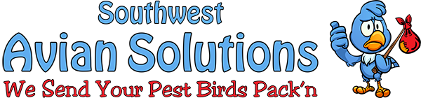 Pigeon Control Near Me, Bird Control Service, Pest Bird Control